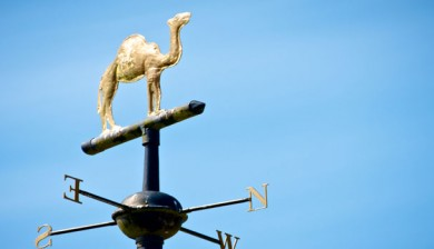 Distinctive camel design on weathervane on top of Camelford Town hall